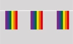 Rainbow Pride Flag bunting 6m long