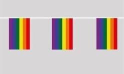 Rainbow Pride Flag bunting 6m long
