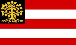 Den Bosch Gemeentevlag