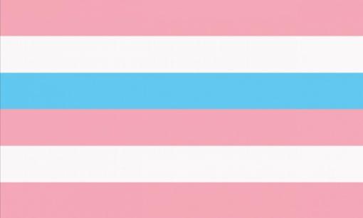 Intersex Flag pink blue