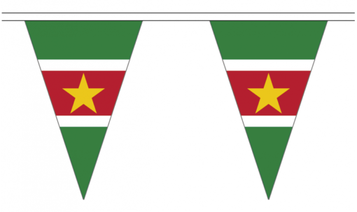 Suriname vlaggenketting 20m